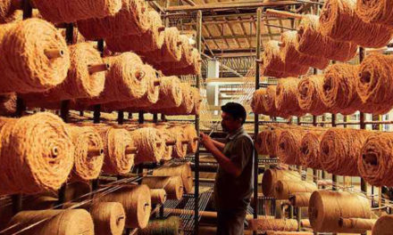 Revival package for coir sector to boost fibre production in Kerala