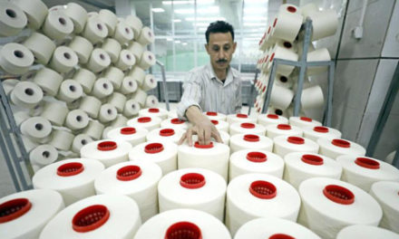 Plans to upgrade of state-run spinning, weaving firms in Egypt
